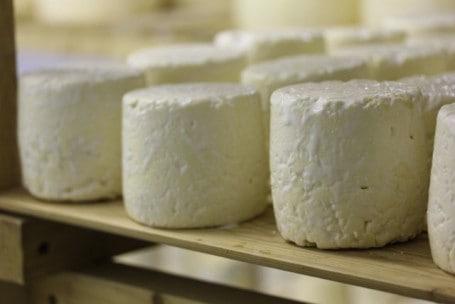 Ceri's Cheese recipe