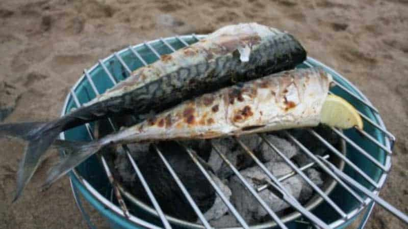 Mackerel-on-the-bucket-barbeque
